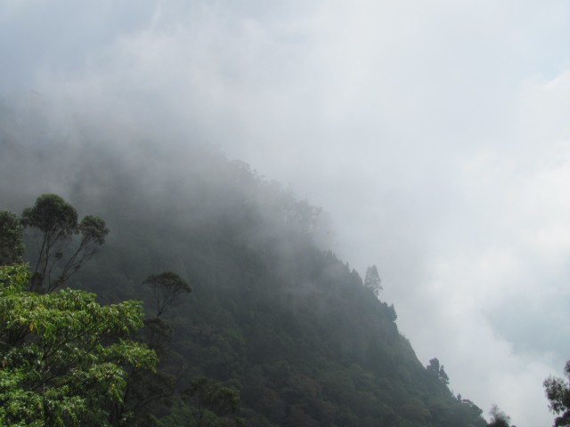 Kodaikanal trek, clouds and clouds in summer !!!