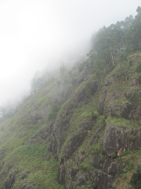 Kodai trek: On the way to Vellagavi