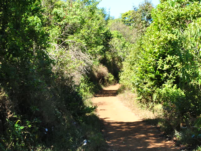 Tadiandamol trek: Path becoming smaller and smaller