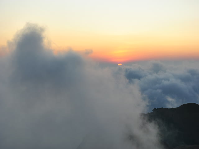 Tadiandamol trek: Above the Ocean of clouds