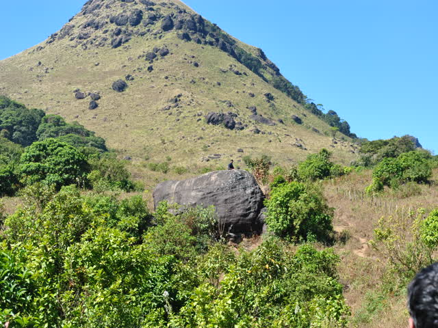 Tadiandamol trek: Famous big rock (front view), Person on top is to indicate size of the rock